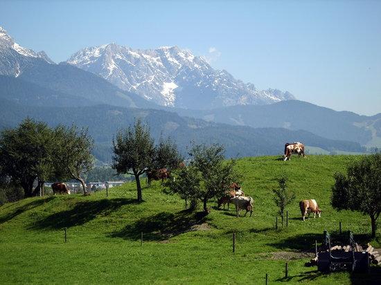 Цель-ам-Зе, Австрия: Das Steinerne Meer bei Zell am See