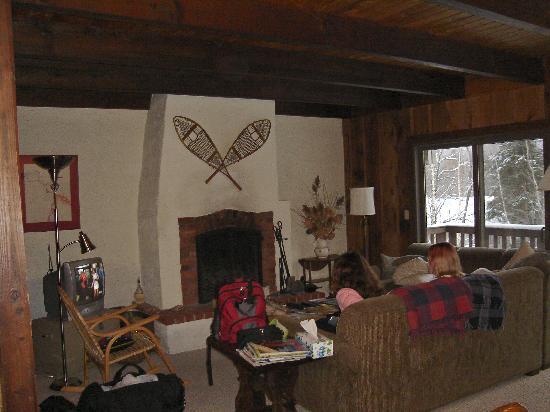 Hemlock Ridge Condominium: living room