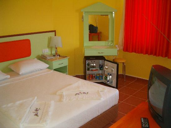 Mandal-Inn Hotel: Room