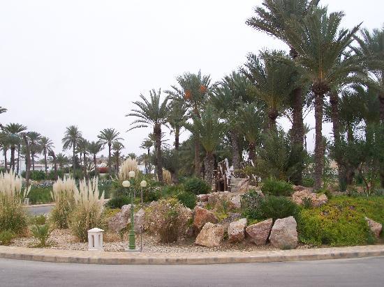 Zita Beach Resort: Devant l'Hôtel