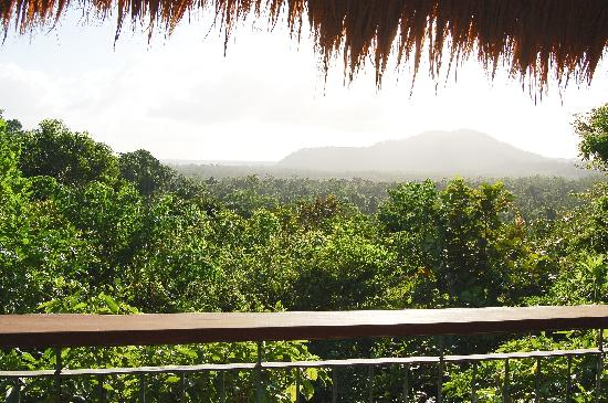 Cockatoo Hill Retreat: Balcony view