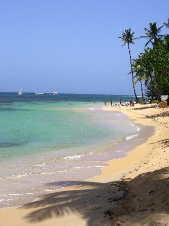 La Dolce Vita Residence: spiaggia di fronte