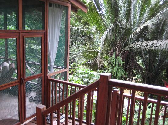 Ian Anderson's Caves Branch Jungle Lodge: Entry to the Treehouse