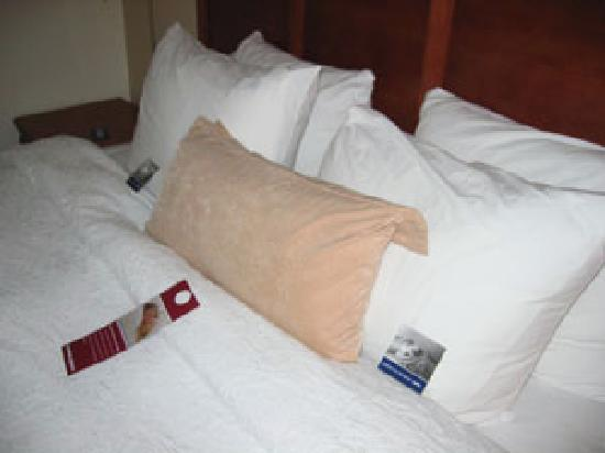 Quality Inn: fluffy bed