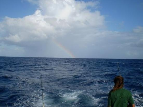 Captain stanley and jason picture of stanley 39 s deep sea for Deep sea fishing jamaica