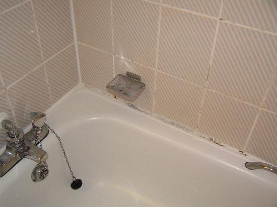 Days Inn Bradford M62: Moldy Tub and Shower