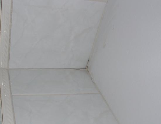 Hotel Lindner: Tiling in bathroom needs replacement