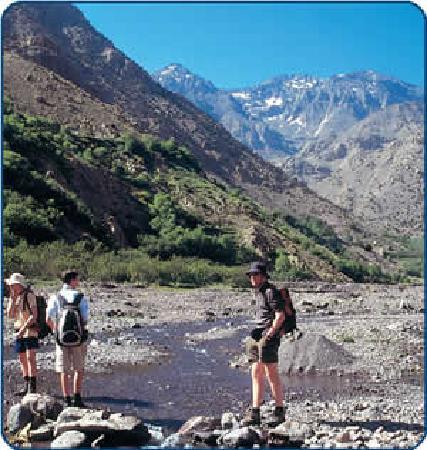 Tourtatine : Trekking
