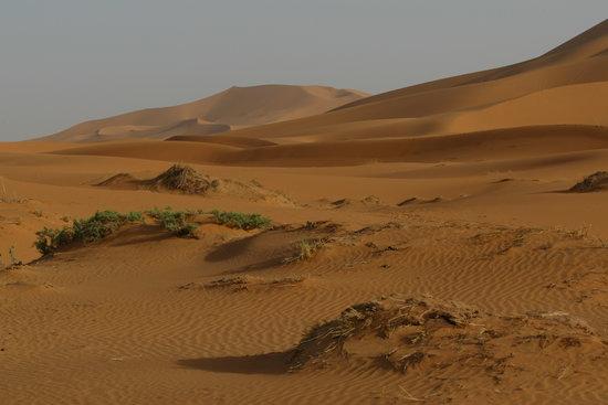 Marrakech, Marrocos: vue désertique