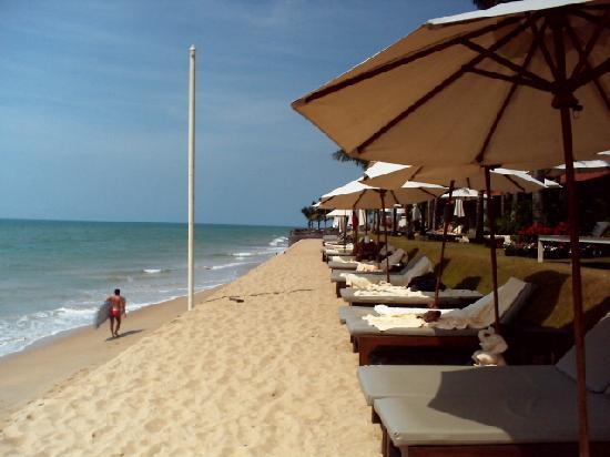 Chongfah Beach Resort : Beach lounge chairs