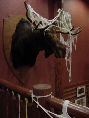 Six Flags Great Escape Lodge & Indoor Waterpark: Spookfest Decor Lobby