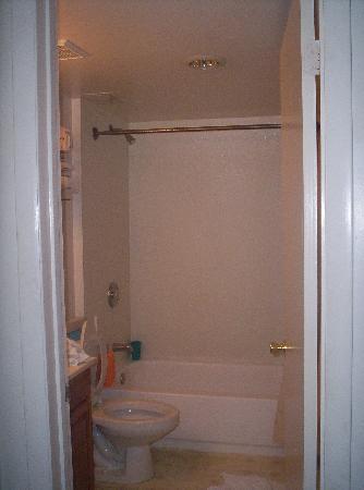 Stratford Motor Lodge : The bathroom was clean.
