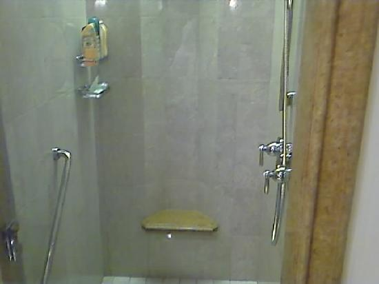 Shangri-La Hotel, Qaryat Al Beri, Abu Dhabi: Large walk in dual shower with seat!