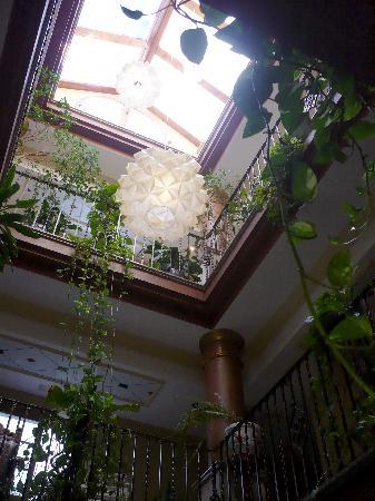 Hotel Avenida Tropical: HALL TOP