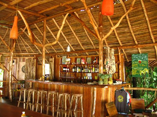 Al Natural Resort: Bar