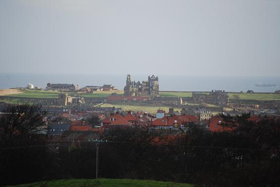 Victoria's Bed & Breakfast: whitby abbey from farm