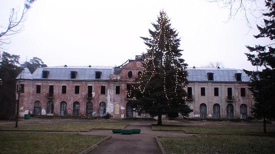 Narva Joesuu