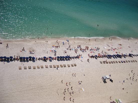 Calypso Resort & Towers: Beach View