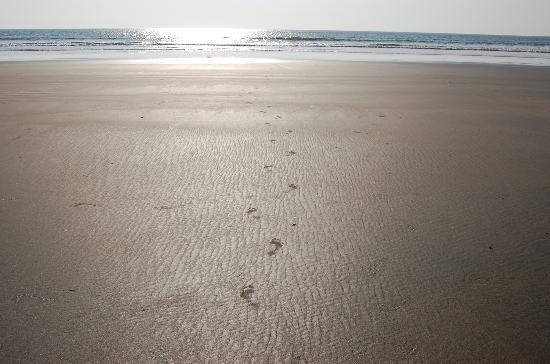 OYO 9411 Resort Calangute: Asvim beach...