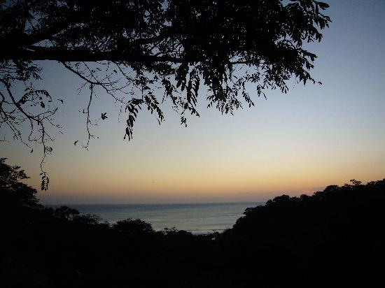 Buena Vista Surf Club : View from the deck of BVSC