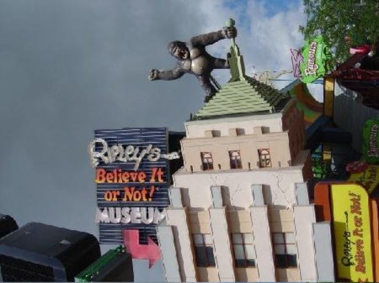Ripley's Believe It or Not! Museum: Yes, the building is sideways