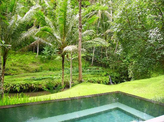 Four Seasons Resort Bali at Sayan : la vue depuis la villa
