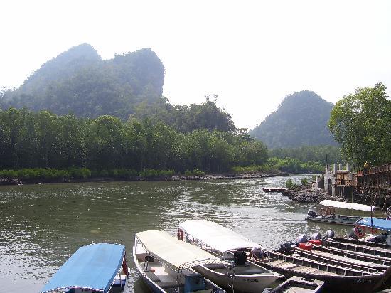 Langkawi Lagoon Resort: Mangrove tour