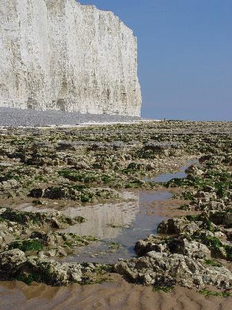 Eastbourne, UK: Chalk Cliff from Birling Gap
