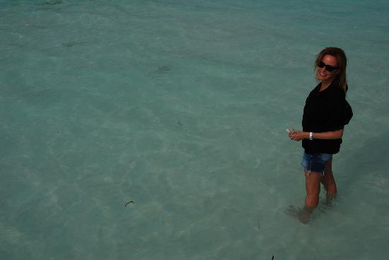COMO Cocoa Island: you'll love the sharks..