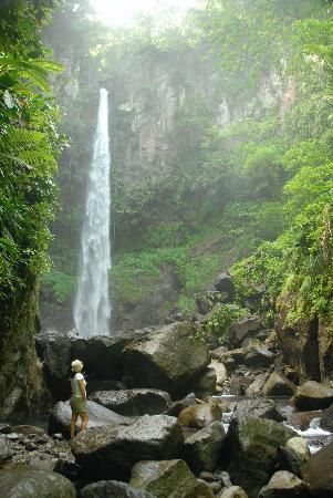 Zandoli Inn: Sari Sari Falls