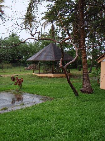Coconut Inn: The Gazebo