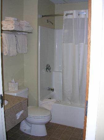 The Pointe at Castle Hill Resort: Bathroom