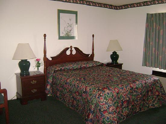 William Ann Motel: Guest Room - 1 Queen Bed
