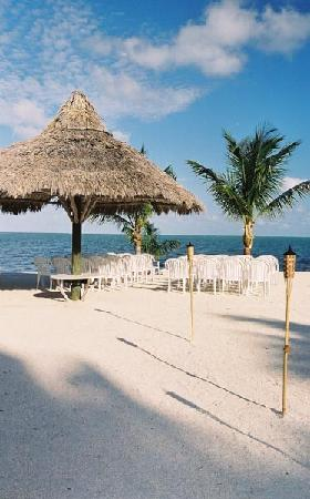 Coconut Cove Resort and Marina: ready for the I do!!