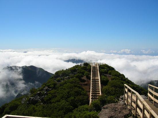 Funchal, Portugal: Pico Ruivo