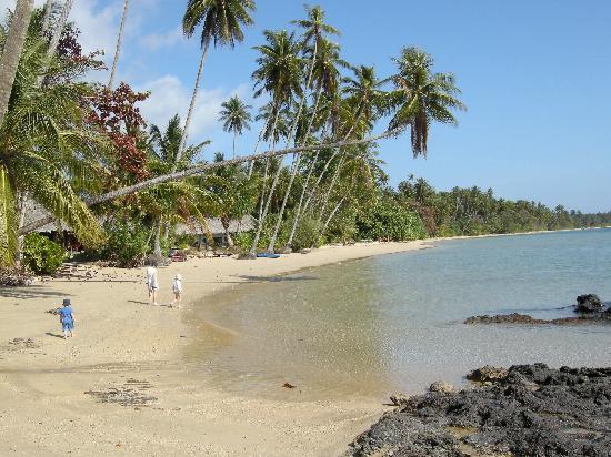 Monkey Island Resort: Beach at Monkey Island