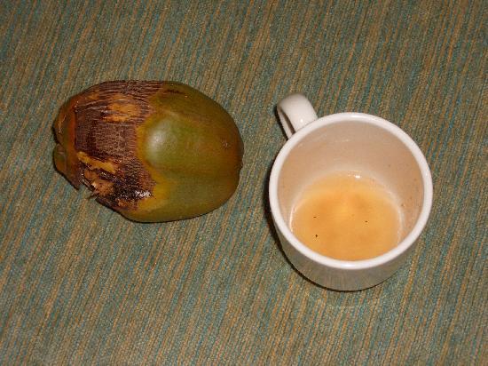 Bucuti & Tara Beach Resort Aruba: Made tasty drinks with fresh coconut found outside our  room!