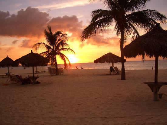 Bucuti & Tara Beach Resort Aruba: Just beautiful!!!