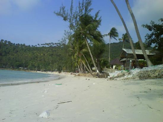 หาดสลัด: salad beach 2