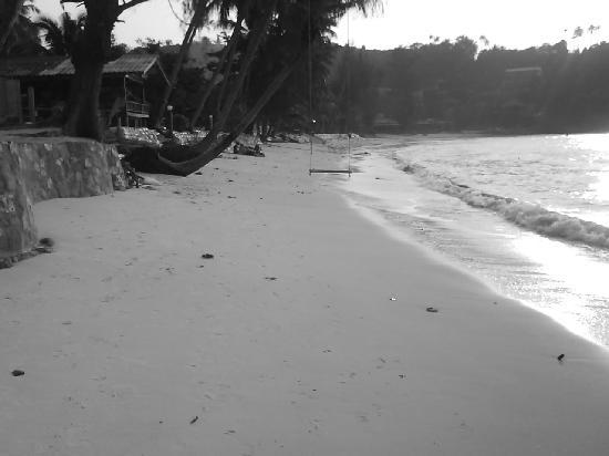 หาดสลัด: salad beach 3