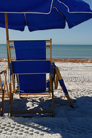 Honeymoon Island State Park: Chairs and Umbrellas for Rent