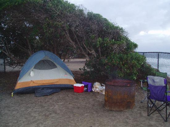 South Carlsbad State Beach: Our Campsite