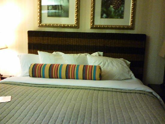 DoubleTree by Hilton Hotel Vancouver, Washington: Comfy king bed!
