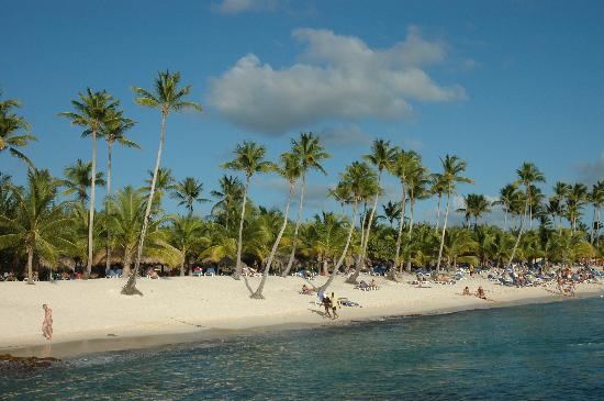 Catalonia Gran Dominicus: amazing beach