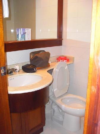 Leblon Suites Hotel: Salle d'eau