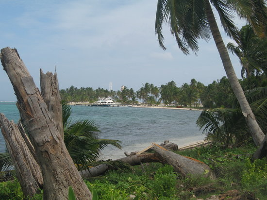 Cayo Ambergris, Belice: Picture from the bird sanctuary island