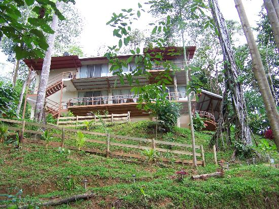 Mar y Selva Ecolodge: View of main lodge