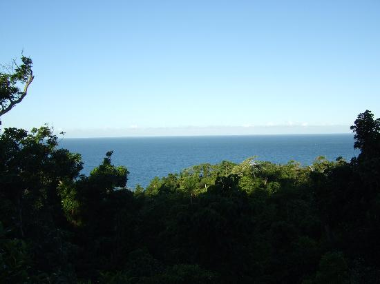 Sanctuary Retreat: View from the Longhouse
