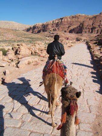 Petra/Wadi Musa, Jordania: Locals