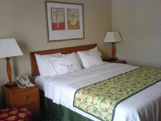 Fairfield Inn by Marriott Port Huron: bed, room 320